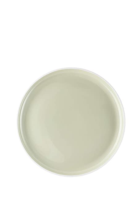 Arzberg Profi Plato, Plato de Comida, Willow, Porcelana, 27 cm ...