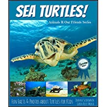 Turtles! Fun Facts about Sea Turtles for Kids with Amazing Photos (for 6-10 year old)