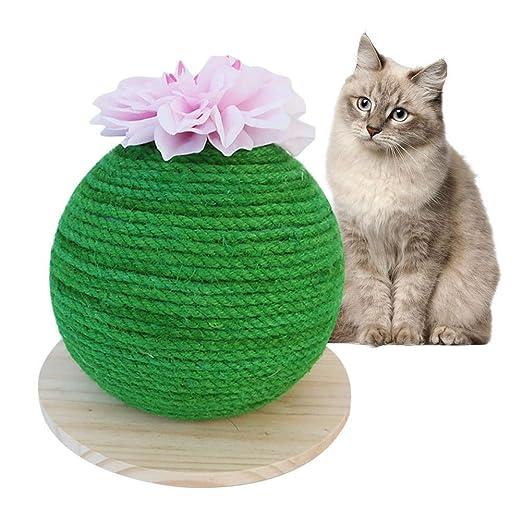 Allowevt Divertida Bola de rascador de Gato de Cactus con Flor ...