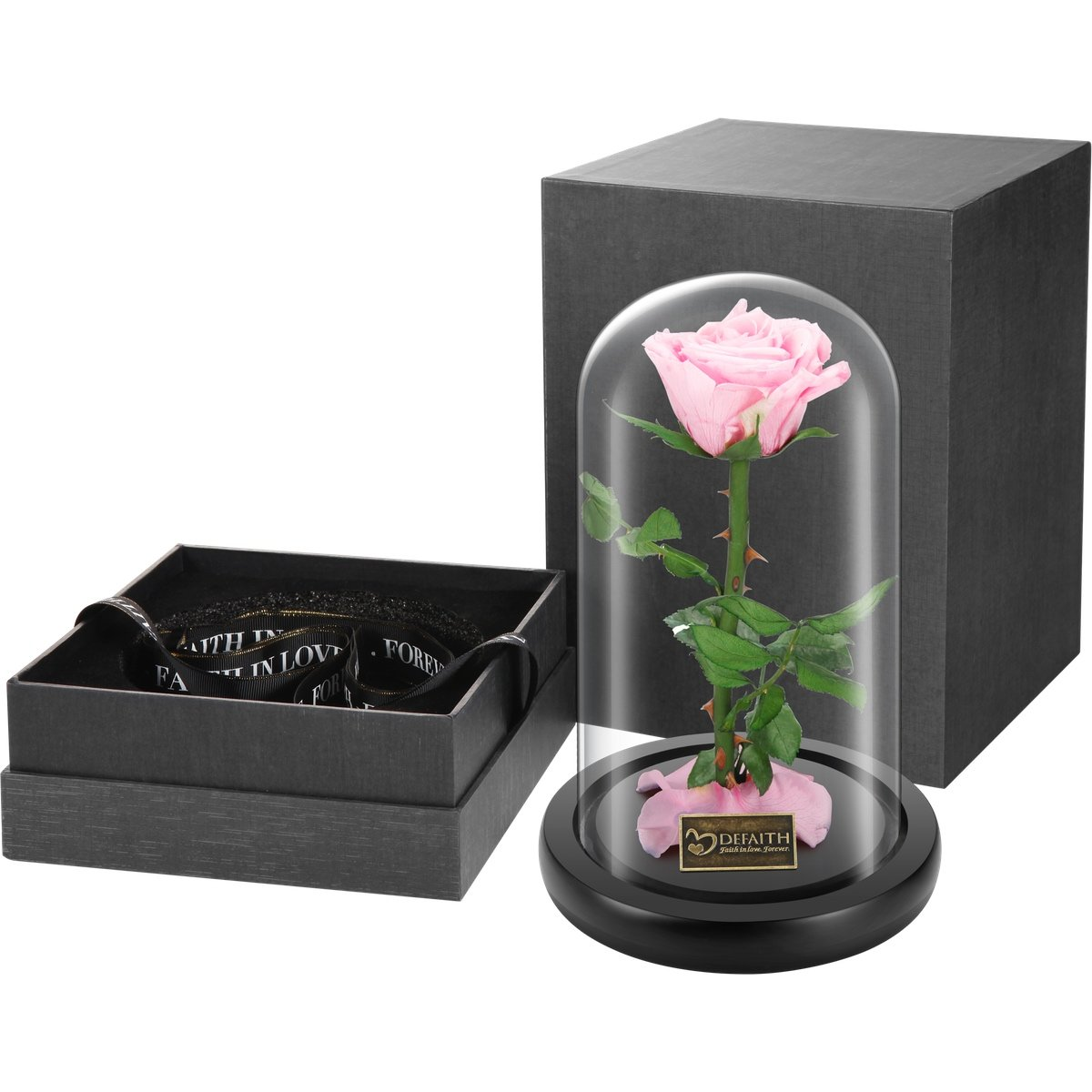 DeFaith Beauty and the Beast Rose, 9'' x 6'' Preserved Real Fresh Rose in Glass, Unique Anniversary Birthday Gifts for Her Women Mother Wife Girlfriend (9'' Beauty and The Beast Rose - Light Pink)