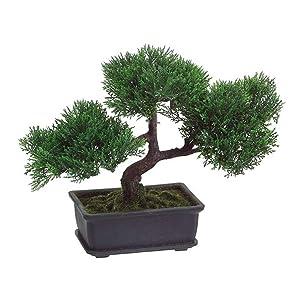 T-Trove Artificial Japanese Cedar Bonsai Tree 9 inch Tall