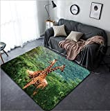 Vanfan Design Home Decorative Fight of two giraffes Africa Kenya Samburu national park Modern Non-Slip Doormats Carpet for Living Dining Room Bedroom Hallway Office Easy Clean Footcloth