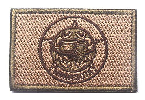 Minnesota State FLAG TACTICAL US ARMY USA MILITARY MORALE VELCRO PATCH (a set) (1)