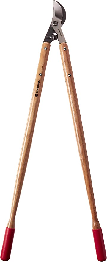 36 Corona Bypass Orchard loppers