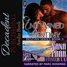 Entwined Destiny: Destiny African Romance, Book 3 Audiobook by Nana Prah Narrated by Mark Rossman