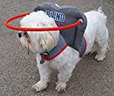 Muffin's Halo Guide for Blind Dogs, Medium - Blind Dog