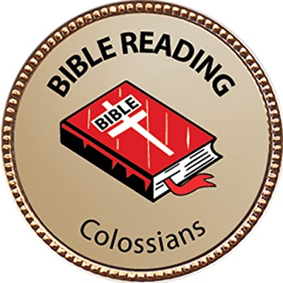 Keepsake Awards Colossians Bible Reading Award, 1 inch Dia Gold Pin Bible Reading Achievements Collection: Toys & Games