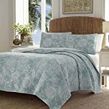 3pc Blue Grey White Full Queen Quilt Set, Floral Themed Bedding Bohemian Classic Flower Rose French Country Shabby Chic Vintage Antique Watercolor Calm Aqua, Cotton