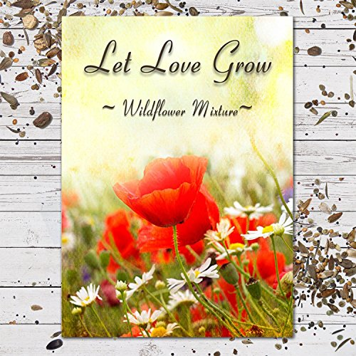 (25 Wildflower Seed Packet Favors Let Love Grow (F08))