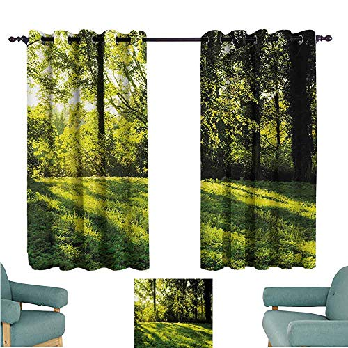 DONEECKL Novel Curtains Green Forest Landscape at Sunrise Beams Trees Grass Field Rural Scenery Nature Peaceful Photo Blackout Draperies for Bedroom Window W55 xL72 Green