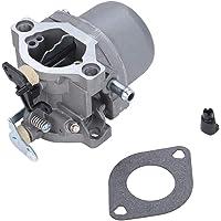 Wifehelper Motor Carburador Carb se Adapta a Briggs