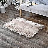 Cheap LeeVan Rectangle Sheepskin Rug Supersoft Fluffy Area Rug Shaggy Silky Throw Rug Floor Mat Carpet Decoration (2 ft x 3 ft, Coffee)