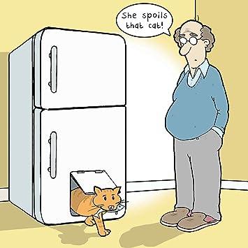 Twizler Carte Humoristique Avec Spoilt Cat Carte Vierge Carte D