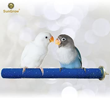 SunGrow Bird Perch - Naturally Keeps Pet Bird Nails Trim & Beaks Smooth -  Satiates Pecking Instinct - Perfect for Lovebirds, Budgies, Finches & Small