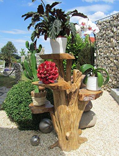 Blumenständer aus Holz 60cm mit 4 Ablagen Kaffeebaum