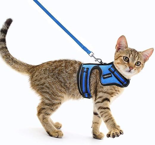 rabbitgoo Arnes para Gatos y Correa 150cm Chaleco Ajustable Reflectante Cómodo Material con 2 Velcros para Fácil de Poner y Quitar para Paseo Diario Arnes para Perro Pequeño Conejos Gatos M Azul: