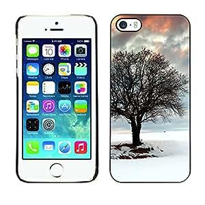 TaiTech / Prima Delgada SLIM Casa Carcasa Funda Case Bandera Cover Armor Shell PC / Aliminium - Árbol del invierno - iPhone 5 / 5S