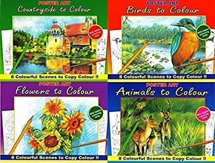 Lot De 4 Grands Livres De Coloriage Peinture Campagne Fleurs