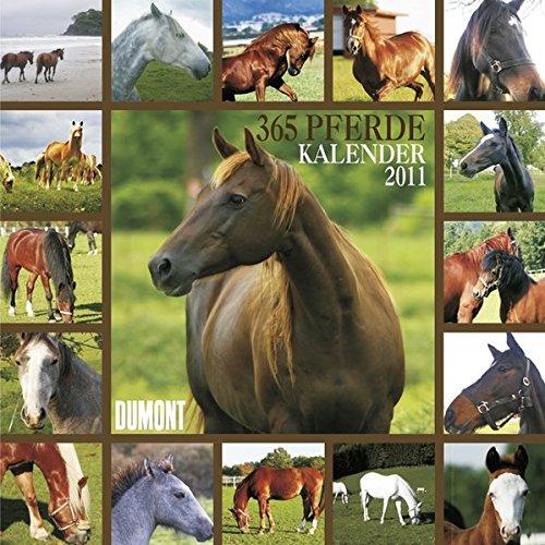 365 Pferde- Kalender 2011