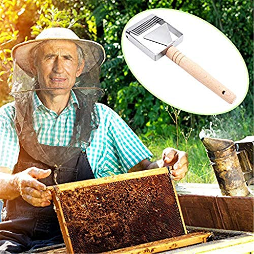 Honey Shovel Scraper fessional Bee Hive Beekeeping Equipment Supplies  HOT