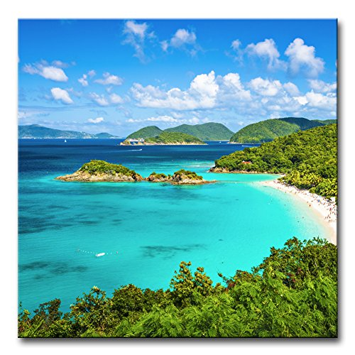 (Wall Art Decor Poster Painting On Canvas Print Pictures Trunk Bay St John Virgin Islands United States Seascape Beach Framed Picture for Home Decoration Living Room Artwork)