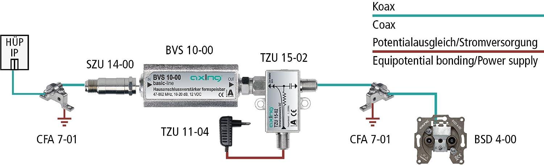 Axing BVS 10-00 - Amplificador de línea para señal satélite (18-20 dB) (importado): Amazon.es: Electrónica