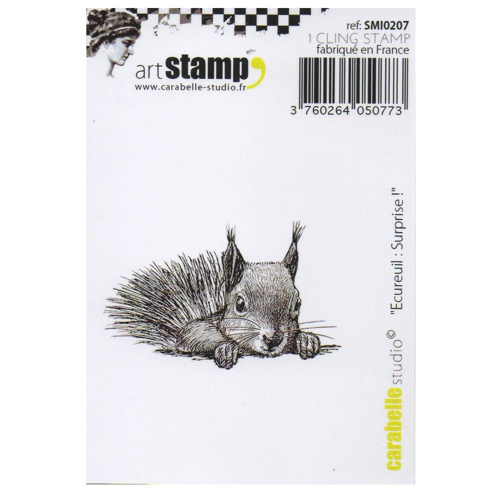 Carabelle Studio Cling Stamp Art, Stempel Stempel Stempel Set, Eichhörnchen  Überraschung , für Papierbasteln, Stempelprojekte, Kartengestaltung und Scrapbooking B078JRPFKY | Online Outlet Shop  aa86d6