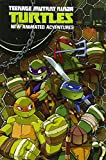 img - for Teenage Mutant Ninja Turtles: New Animated Adventures Omnibus Volume 1 book / textbook / text book
