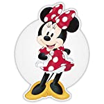 "Minnie Bow‐tique (10"" Picture Disc Vinyl)"