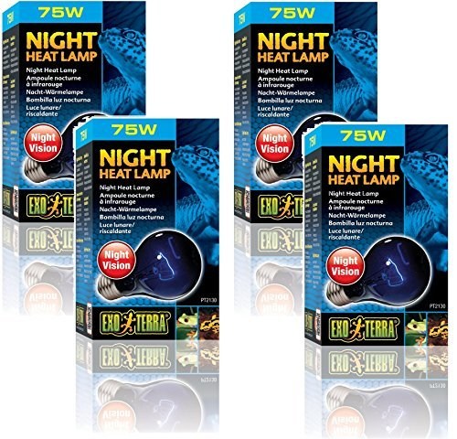 (Exo Terra Night-Glo Moonlight A19 Lamp, 75-Watt (4 Pack))
