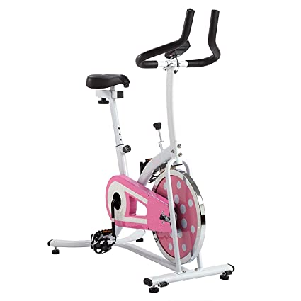 Amazon.com : sunny health & fitness indoor cycling exercise