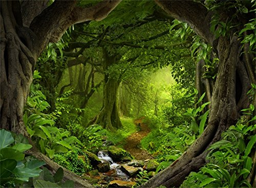 Leowefowa 7X5FT Jungle Forest Backdrop Dreamland Cascade Dirt Road Path Backdrops for Photography Old Trees Spring Vinyl Photo Background Kids Adults Portraits Studio Props ()