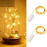 ANJAYLIA Fairy String Lights 2 Pack 10ft 30LED Firefly Lights Battery Operated Silver Coated Copper Wire Starry Fairy…