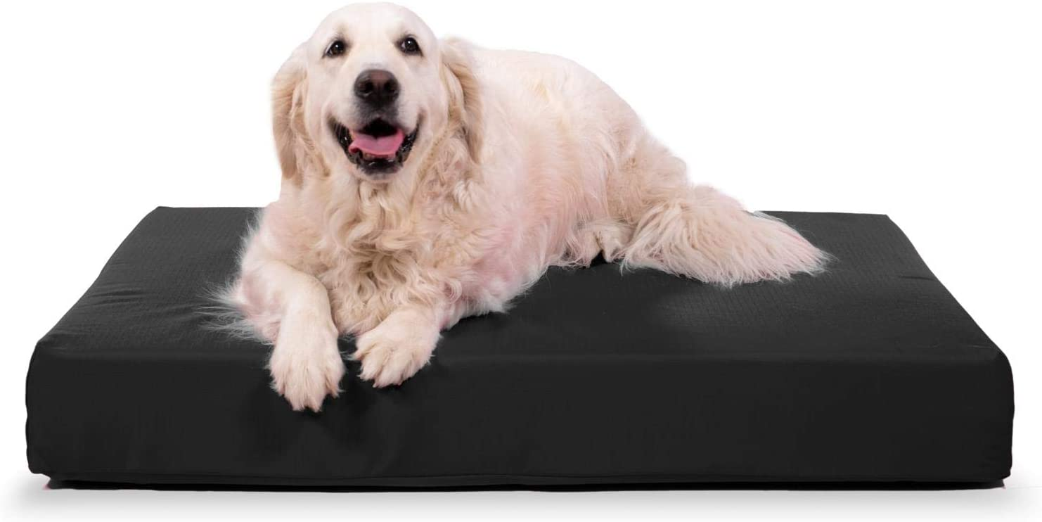 K9 Ballistics Tough Orthopedic Dog Bed Large Nearly Indestructible Chew Proof Washable Ortho Pillow For Chewing Puppy For Large Dogs 40 X34 Black Pet Beds Kitchen Dining