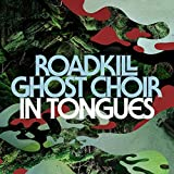 In Tongues by Roadkill Ghost Choir (2014-08-19)