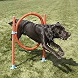 Lixit Jump Hoop Dog Agility Starter Equipment