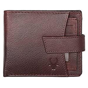 WildHorn Brown Men's Wallet 2