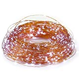 ER CHEN(TM) 165ft Led String Lights,500 Led Starry Lights on 50m Copper Wire String Lights + 12V DC Power Adapter(White)