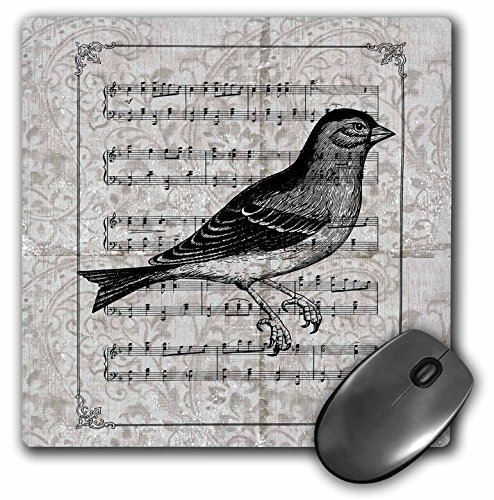3dRose PS Vintage - Vintage Bird with Music Sheet - MousePad (mp_108723_1)