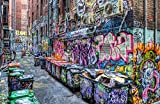 Five Pointz NYC Graffiti Street Art 24 x 18 (canvas) - Banksy, Brainwash