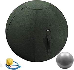 Guken Sitting Ball Chair with Cover, Exercise Yoga Ball for Office and Home Muscle Training Fitness,65cm/75cm Workout Ball with Pump and Handle