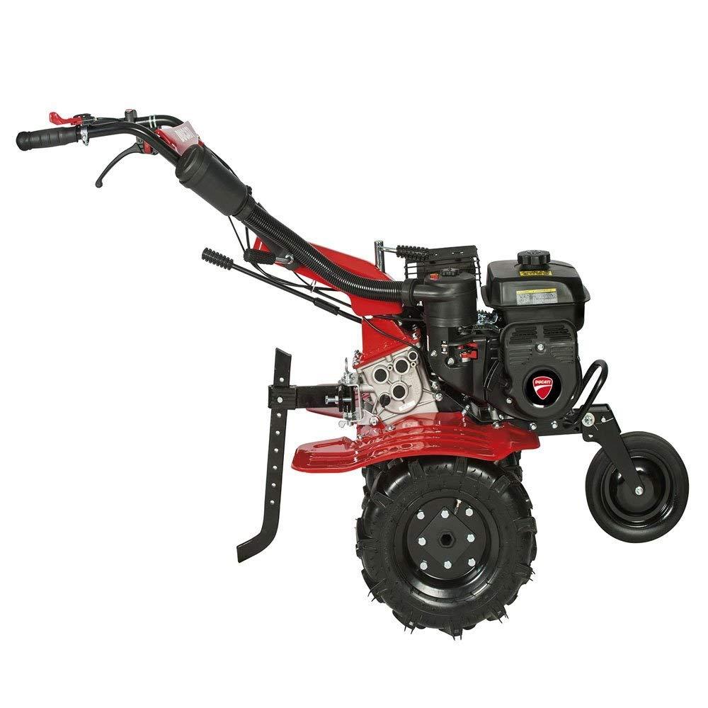 Motoazada Ducati 7000 212cc 7 hp Con Ruedas y Fresa: Amazon.es ...