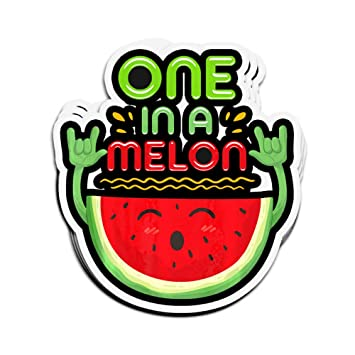 Set of 20 One in a Melon Stickers