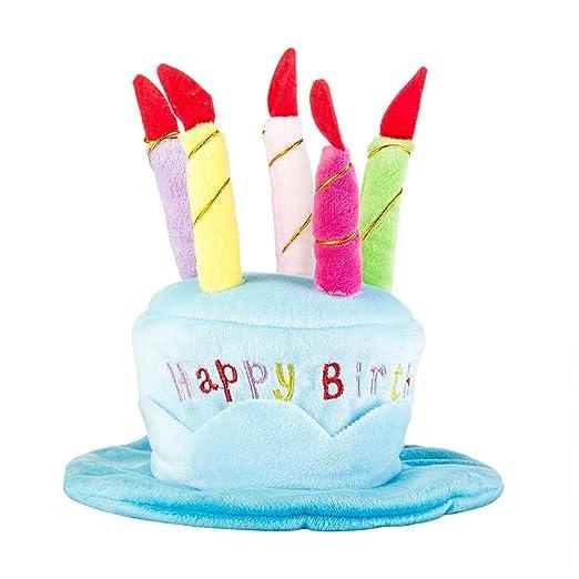 AOLVO Tiny - Sombreros de Fiesta de cumpleaños para Perros ...