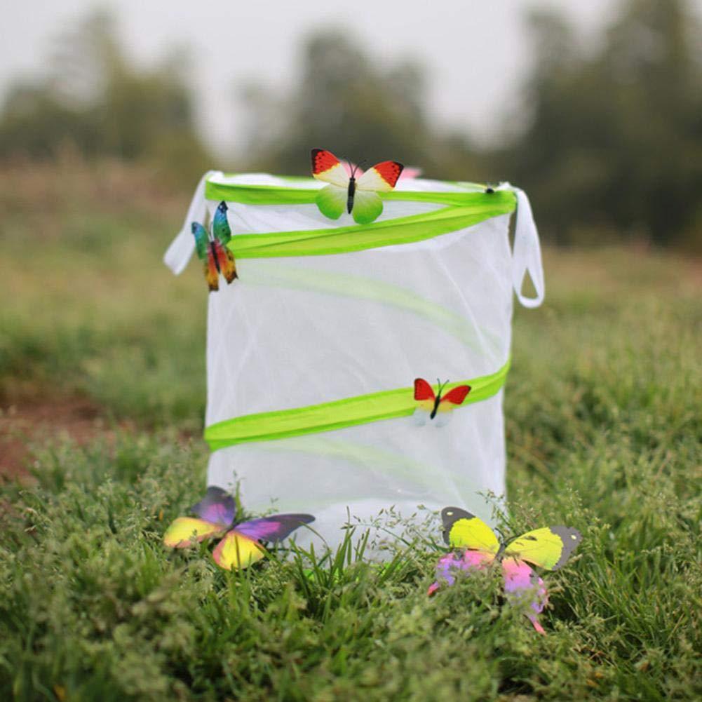 somedays Plegable Insecto y Mariposa Hábitat Jaula Red de cría de ...