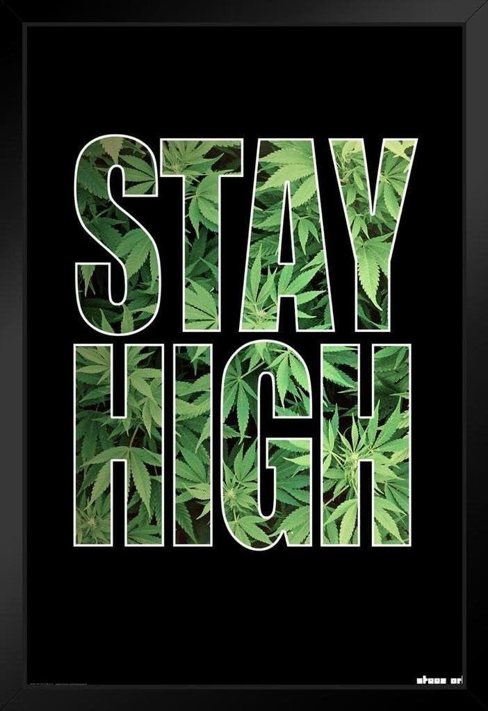Steez Stay High Pot Leaf Art Print Black Wood Framed Poster 14x20