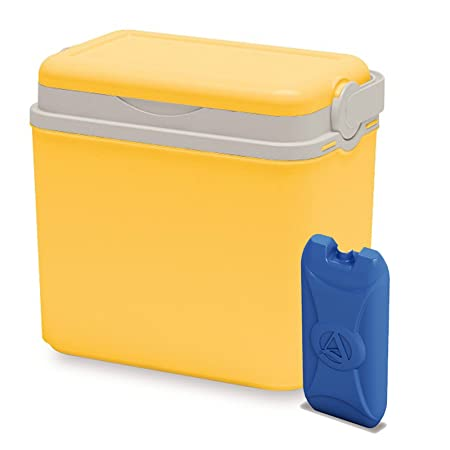 Nevera portátil de 10 litros, refrigerador, para Camping playa ...