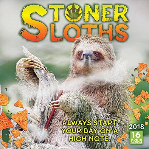 Wholesale 2019 Sloths Wall Calendar for cheap