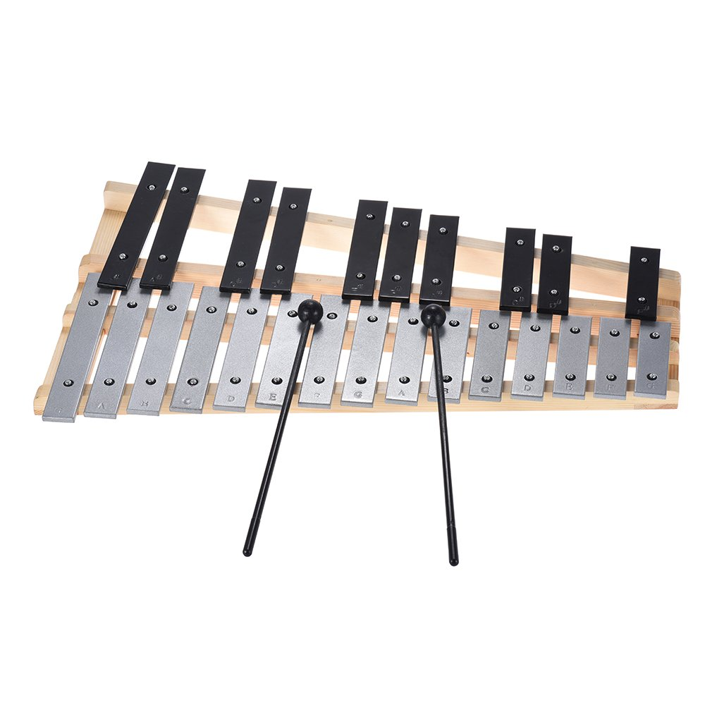 Festnight Glockenspiel, 25 Note Xylophone Percussion Educational Musical Instrument with Carrying Bag