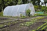 Greenhouse Clear Plastic Film – 25' x